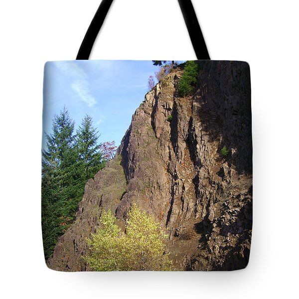 Autumn 6 Tote Bag by J D Owen