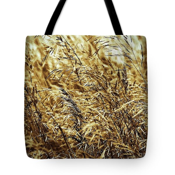 Brome Grass In The Hay Field Tote Bag by J McCombie