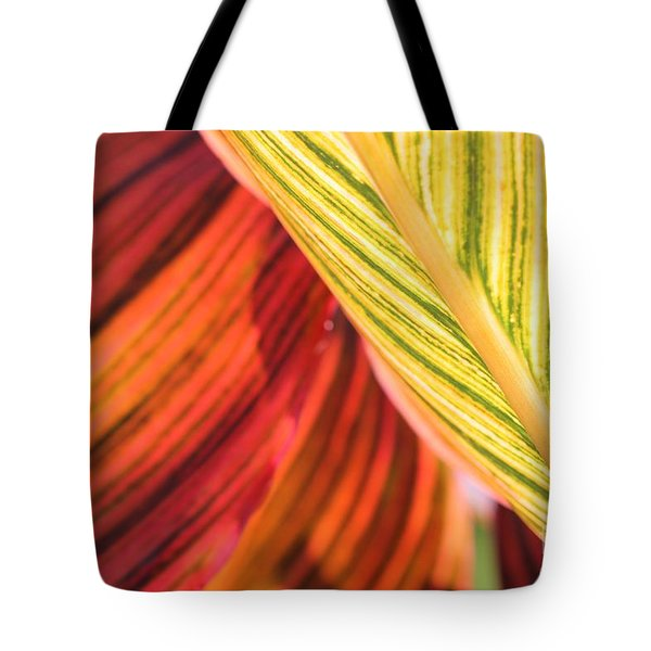 Canna Lily Named Durban Tote Bag by J McCombie