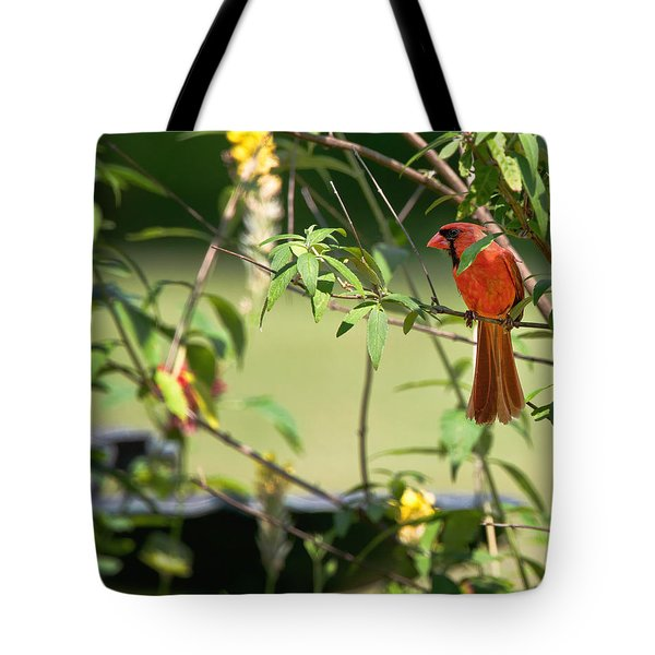 Cardinal Tote Bag by Bill Wakeley