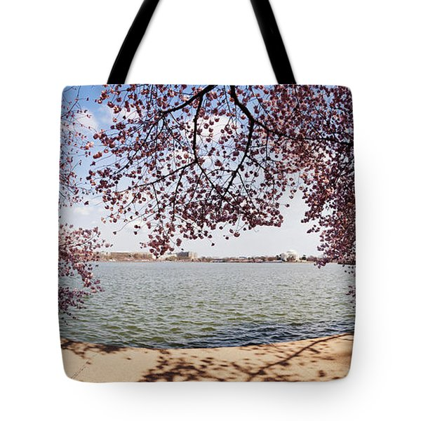 Cherry Blossom Trees In The Tidal Basin Tote Bag