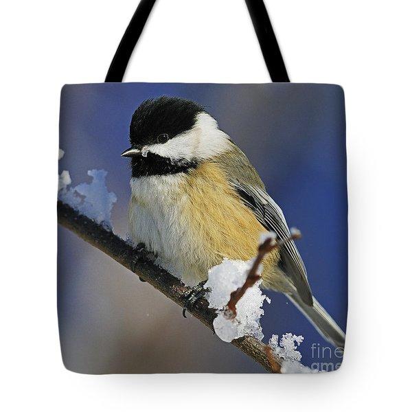 Winter Chickadee... Tote Bag by Nina Stavlund