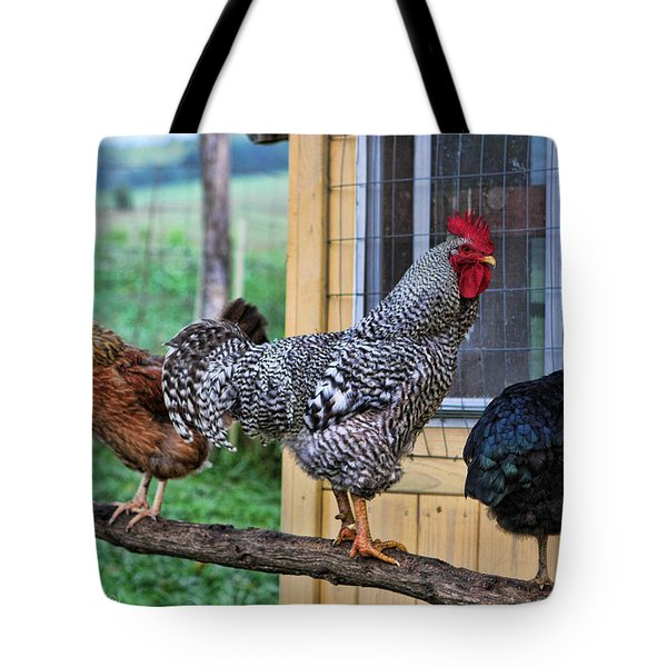 3 Chickens Tote Bag