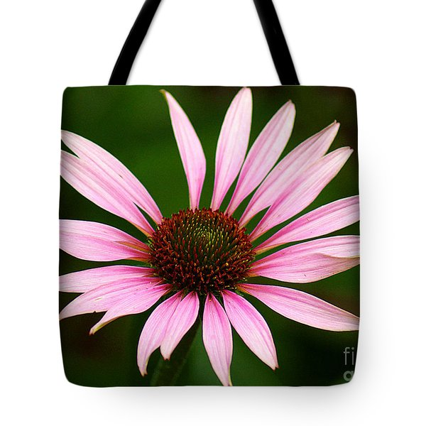 Tote Bag featuring the photograph Coneflower - Echinacea by Lisa L Silva