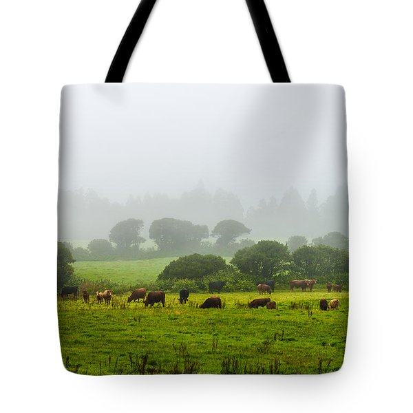 Cows At Rest Tote Bag