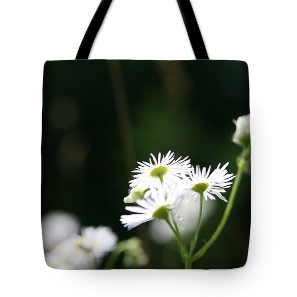 Enlightened  Tote Bag by Neal Eslinger