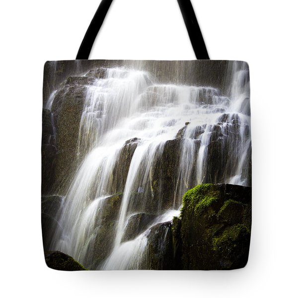 Fairy Falls Tote Bag by Patricia Babbitt