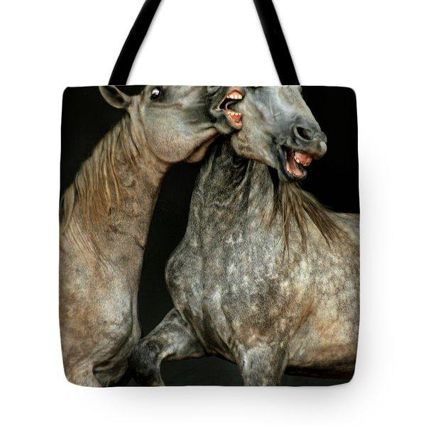 Flamenco Tote Bag by Angel  Tarantella