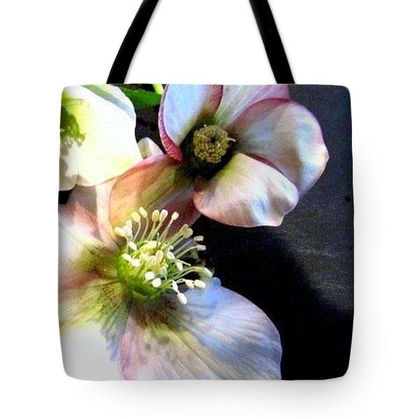 Flowers. Tote Bag by Joyce Woodhouse