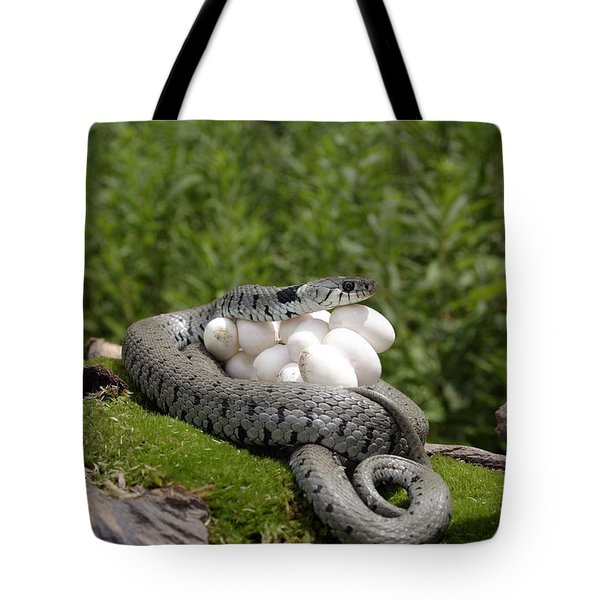 Grass Snake With Eggs Tote Bag