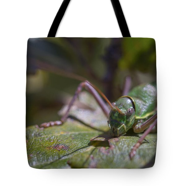 Tote Bag featuring the photograph Green Grasshopper Ephippiger by Jivko Nakev