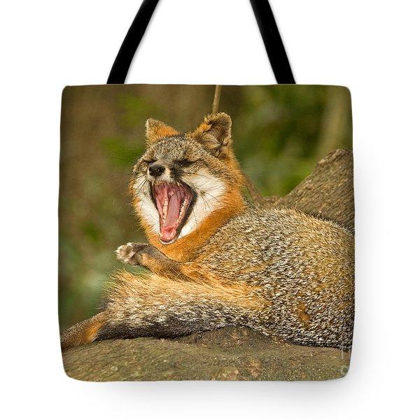 Grey Fox Tote Bag by Millard H. Sharp