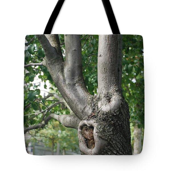 Growth On The Survivor Tree Tote Bag