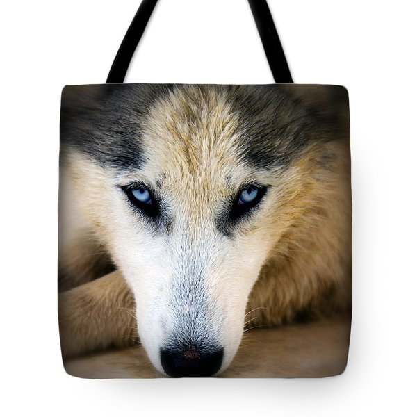 Husky  Tote Bag by Stelios Kleanthous