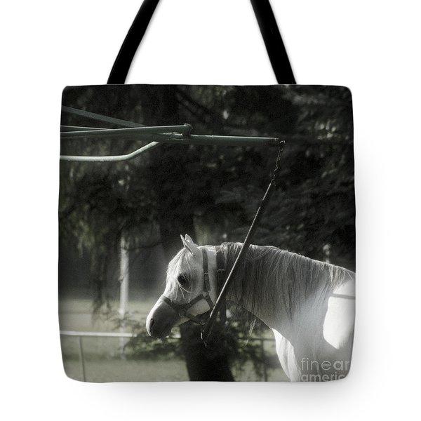 In The Captivity Tote Bag by Angel  Tarantella