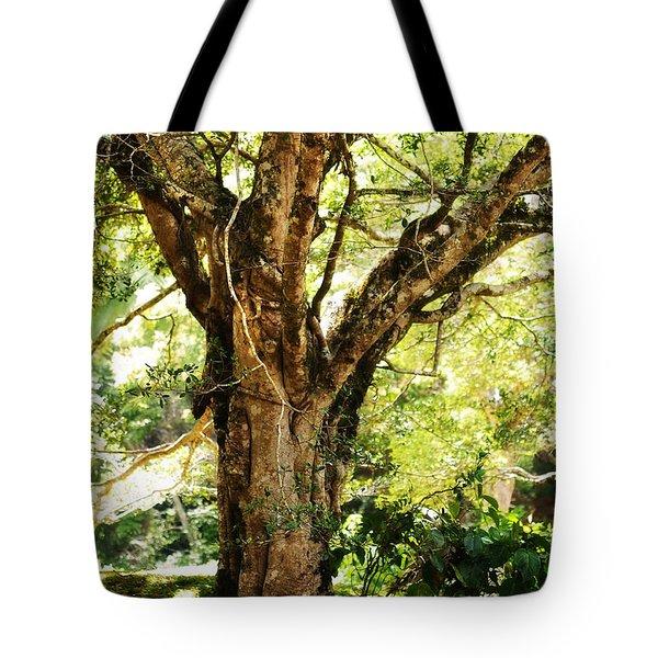 Kingdom Of The Trees. Peradeniya Botanical Garden. Sri Lanka Tote Bag
