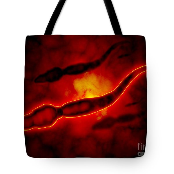 Microscopic View Of Male Sperm Cells Tote Bag by Stocktrek Images