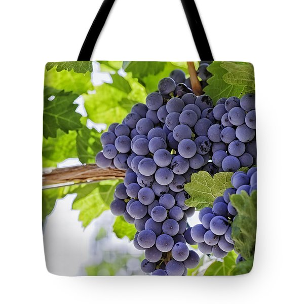 Red Wine Grapes Tote Bag