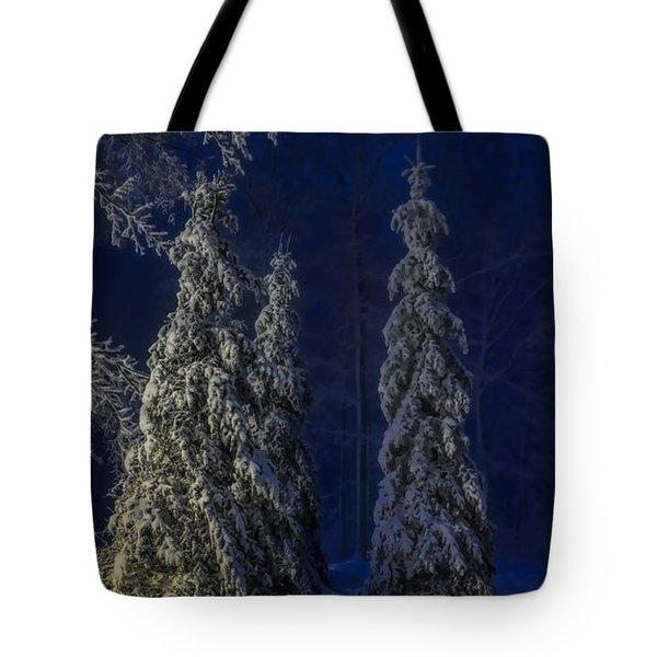Rib Mountain State Park Snow Tote Bag
