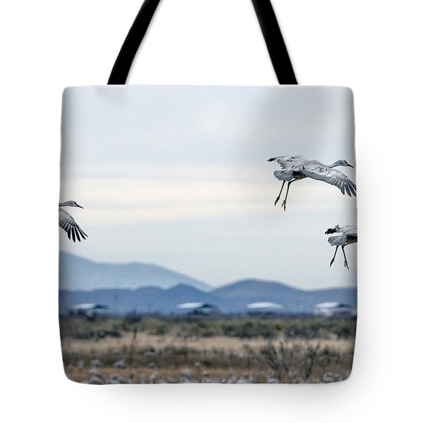 Sandhill Cranes Tote Bag by Tam Ryan