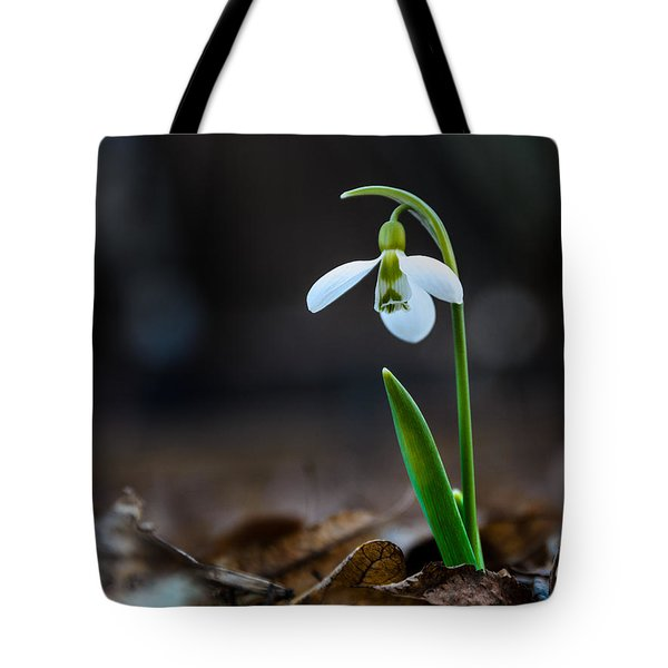 Snowdrop Flower Tote Bag