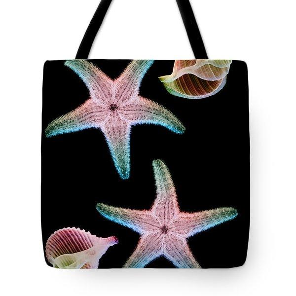 Starfish And Marine Molluscs Tote Bag by D Roberts