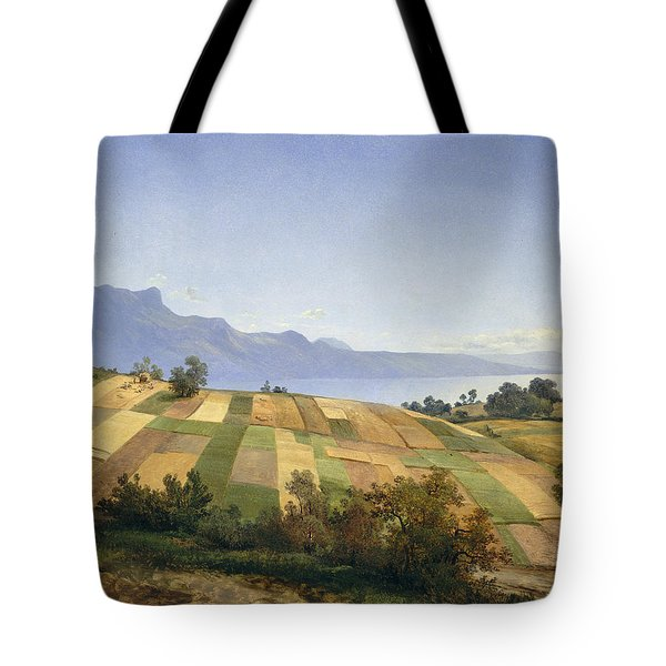 Swiss Landscape Tote Bag by Celestial Images
