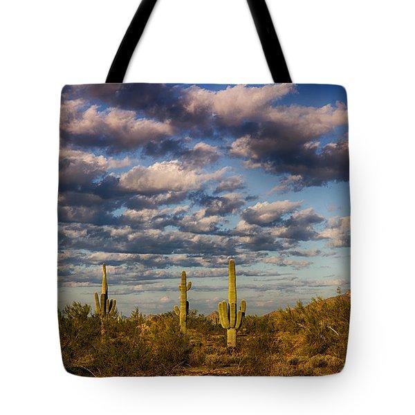 The Desert Golden Hour  Tote Bag by Saija  Lehtonen