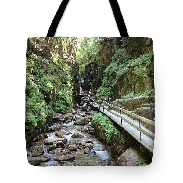 The Flume Gorge   Tote Bag