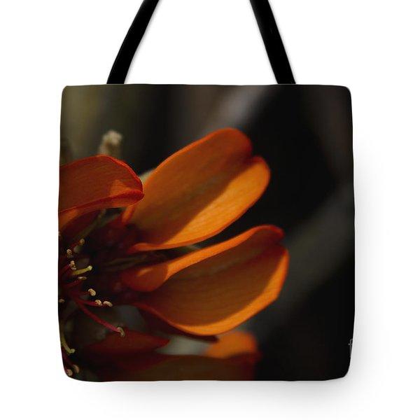 Wiliwili Flowers - Erythrina Sandwicensis - Kahikinui Maui Hawaii Tote Bag by Sharon Mau