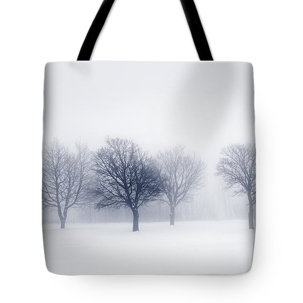 Winter Trees In Fog Tote Bag by Elena Elisseeva