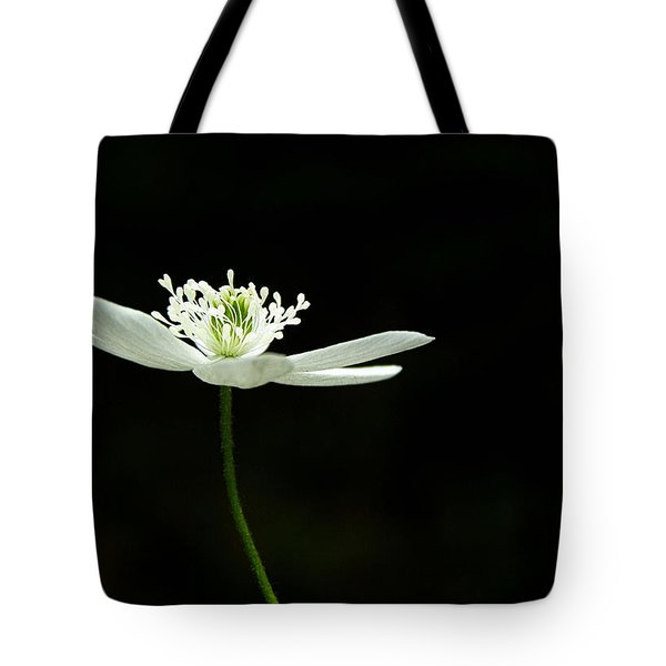 Wood Anenome Tote Bag by Angie Rea