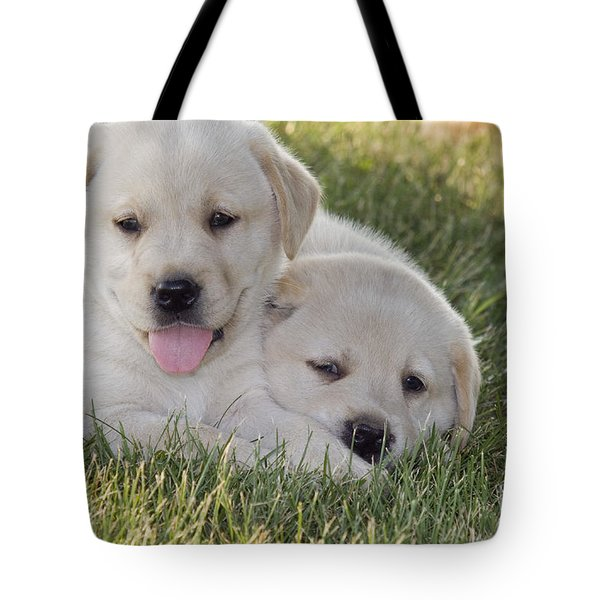 Yellow Labrador Retriever Puppies Tote Bag by Linda Freshwaters Arndt