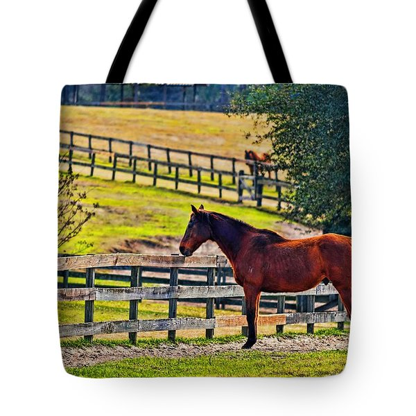 Tote Bag featuring the photograph 3487-200 by Lewis Mann