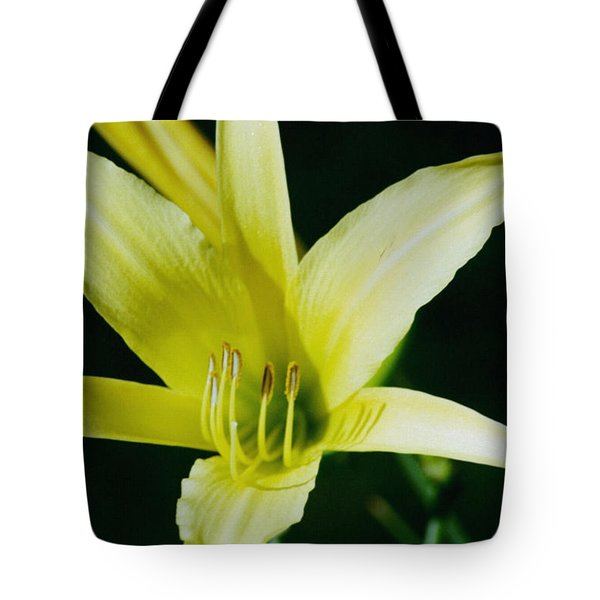 Tote Bag featuring the photograph 3d Yellow Daylily by Belinda Lee