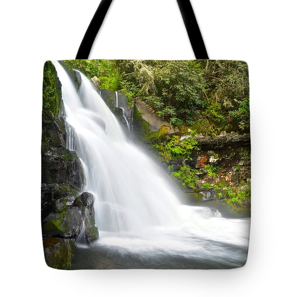 Abrams Falls Tote Bag by Frozen in Time Fine Art Photography