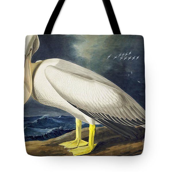 American White Pelican Tote Bag by Celestial Images
