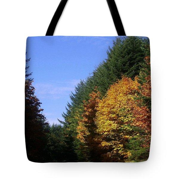 Autumn 9 Tote Bag by J D Owen