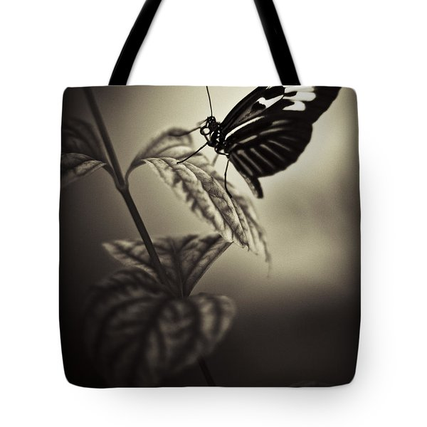 Butterfly Brown Tone Tote Bag by Bradley R Youngberg