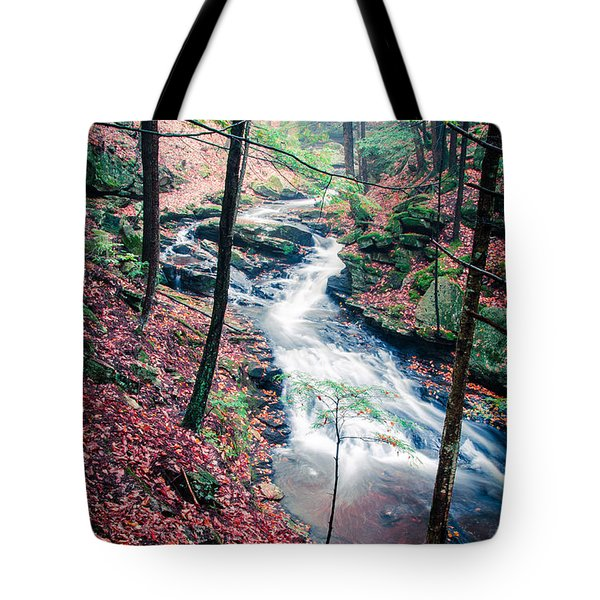 Chesterfield Gorge New Hampshire Tote Bag by Edward Fielding