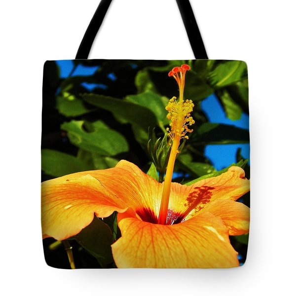 Tote Bag featuring the photograph Untouched Beauty by Faith Williams