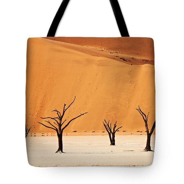 Dead Vlei In Namib Desert Tote Bag by Juergen Ritterbach