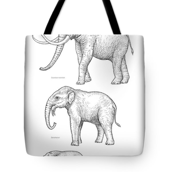 Elephant Evolution, Artwork Tote Bag by Gary Hincks