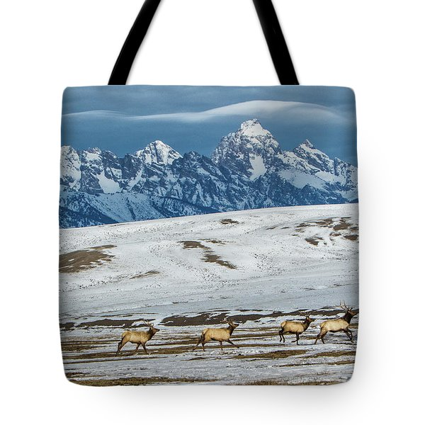 Elk In The 24,700-acre National Elk Tote Bag