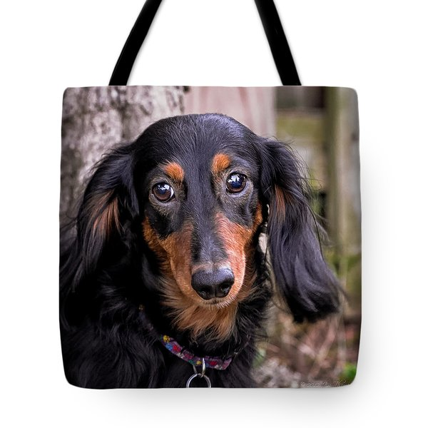Tote Bag featuring the photograph Katie by Jim Thompson