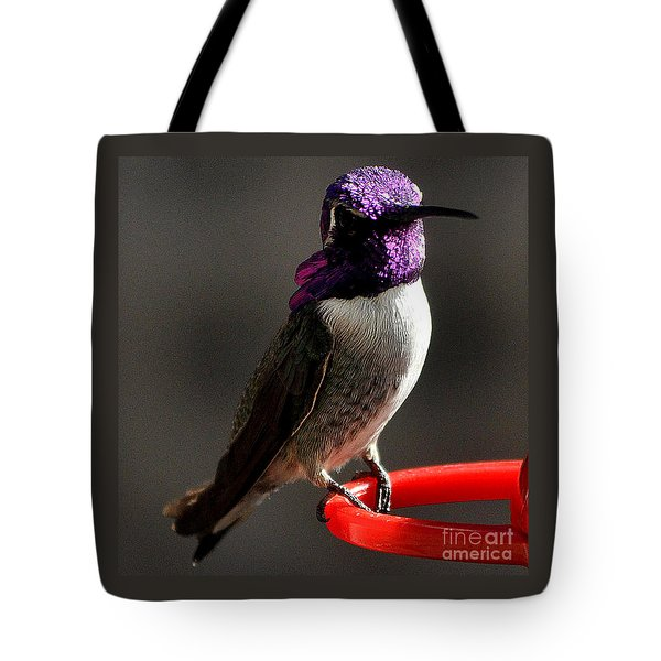 Tote Bag featuring the photograph Male Costa's On Perch by Jay Milo