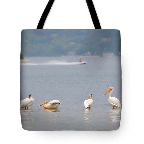 4 Pelicans Tote Bag