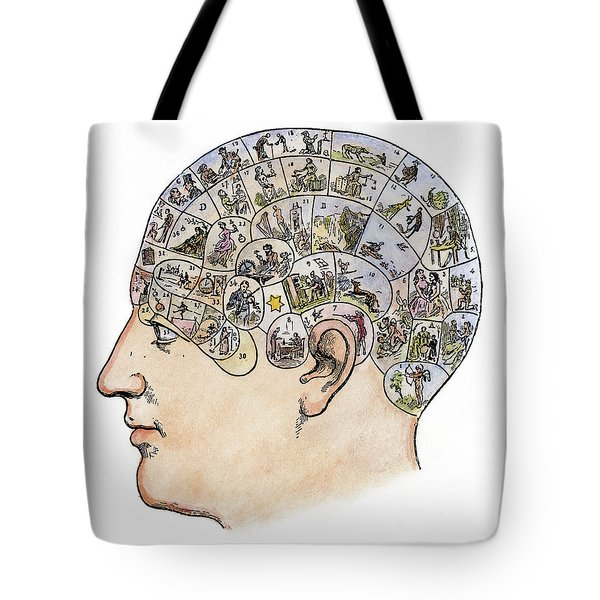 Tote Bag featuring the painting Phrenology, 19th Century by Granger