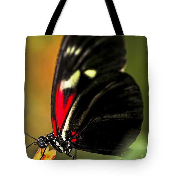 Red Heliconius Dora Butterfly Tote Bag by Elena Elisseeva