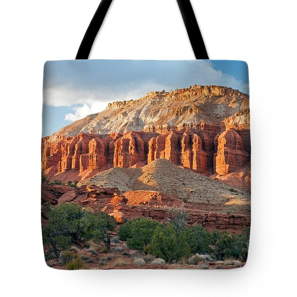 The Goosenecks Capitol Reef National Park Tote Bag